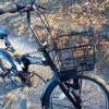 イオン折り畳み自転車FXホッパー